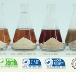 exl-bleached-shellac-dewaxed-high-quality-bleached-shellac-food-grade-pharmaceutical-1
